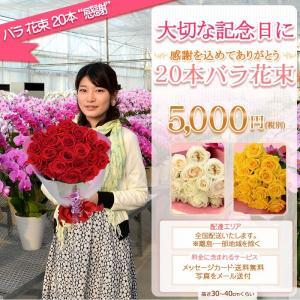 バラ 花束 20本 5000円(税別)全国お届け バラ花束 還暦祝い 記念日 誕生日 プロポーズ 結婚 還暦を祝う60本【rose】|ebina-youran|02