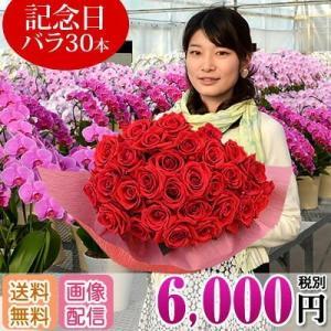 バラ 花束 30本 6000円(税別)全国お届け プレゼント プロポーズ 還暦祝い 敬老の日 還暦を祝う60本【rose】|ebina-youran