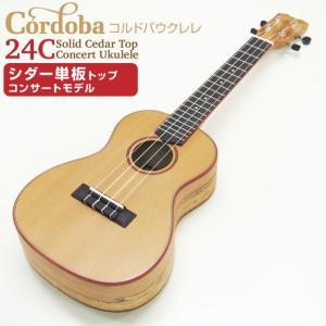 ウクレレ コンサート Cordoba コルドバ 24C シダー単板トップ×スポルテッドメイプル Low-G弦プレゼント|ebisound