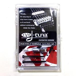 D-Tuna Dチューナー エディファンの必須アイテム|ebisound