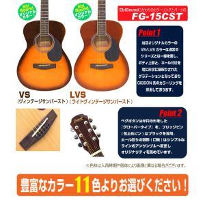 アコースティックギター アコギ 初心者 ハイグレード16点セット Legend レジェンド  FG-15|ebisound|09