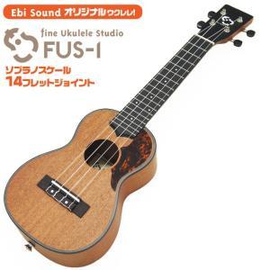 【弦高調整済で抜群の弾きやすさ】ウクレレ アリア EbiSound オリジナル  FUS-1 単品ケ...