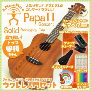 アヌエヌエ ウクレレ コンサート Papa 2 入門セット SJ クリップチューナー 教則DVD付 aNueNue Papa S series  aNN-PM2|ebisound