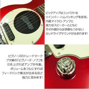 Pignose ピグノーズ PGG-200 CA アンプ内蔵ミニギターセット ebisound 03