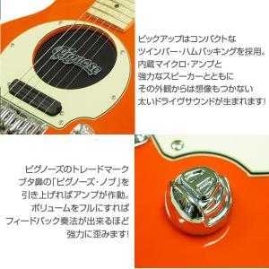Pignose ピグノーズ PGG-200 OR アンプ内蔵ミニギターセット ebisound 03