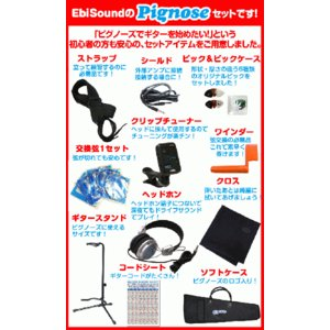 Pignose ピグノーズ PGG-200 OR アンプ内蔵ミニギターセット ebisound 05
