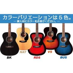 アコースティック・ギター アコギ 初心者セット SX SD2 アコギハイグレードセット|ebisound|05
