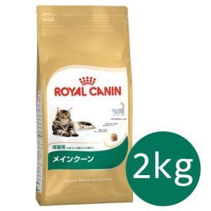 ロイヤルカナン FBN メインクーン 成猫用 2kg|ebisupet