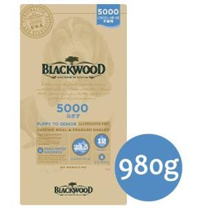 BLACKWOOD ブラックウッド 5000 なまず 980g