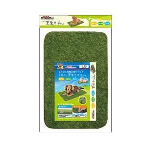 ドギーマンハヤシ 犬猫用マット 芝生きぶん 60×40cm|ebisupet