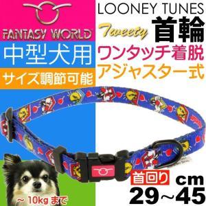 ルーニー・テューンズ 中型犬用首輪〜10kgブルー【パッケージに凹み、汚れ有り】【返品不可】 ebisupet