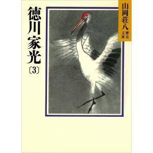 徳川家光 (3) 電子書籍版 / 山岡荘八|ebookjapan
