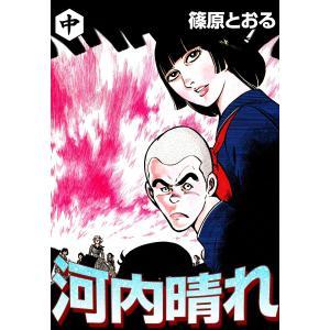 河内晴れ (中) 電子書籍版 / 篠原とおる|ebookjapan