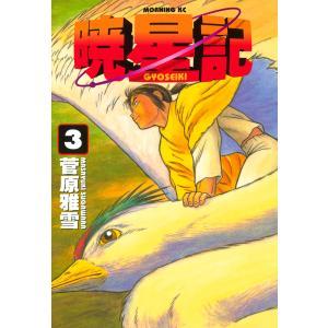 暁星記 (3) 電子書籍版 / 菅原雅雪|ebookjapan