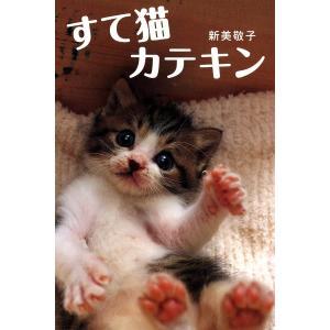 すて猫 カテキン 電子書籍版 / 新美敬子|ebookjapan