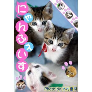 にゃんふぇいす 電子書籍版 / 木村圭司|ebookjapan