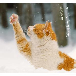 そっとネコぼけ 岩合光昭写真集 電子書籍版 / 写真・文:岩合光昭|ebookjapan