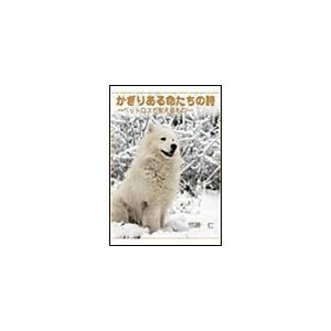 【初回50%OFFクーポン】かぎりある命たちの詩〜ペットロスが教えるもの〜 電子書籍版 / 悠崎仁|ebookjapan
