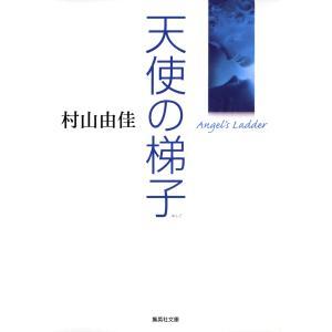 天使の梯子 電子書籍版 / 村山由佳
