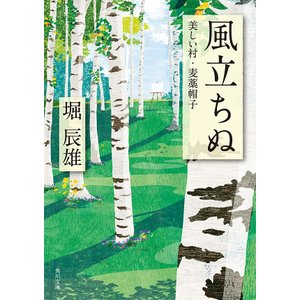 風立ちぬ・美しい村・麦藁帽子 電子書籍版 / 著者:堀辰雄