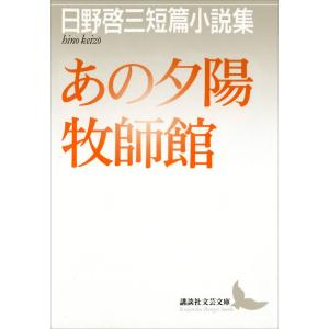著:日野啓三 出版社:講談社/文芸 連載誌/レーベル:講談社電子文庫 提供開始日:2013/11/2...
