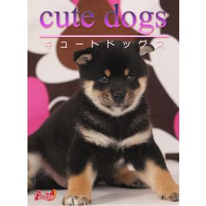 cute dogs08 柴犬 電子書籍版 / 編集:アキバ書房|ebookjapan