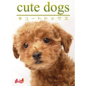 cute dogs10 トイプードル 電子書籍版 / 編集:アキバ書房|ebookjapan