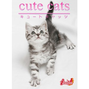 cute cats03 アメリカンショートヘア 電子書籍版 / 編集:アキバ書房|ebookjapan