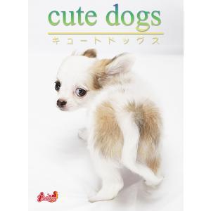 cute dogs12 チワワ 電子書籍版 / 編集:アキバ書房|ebookjapan