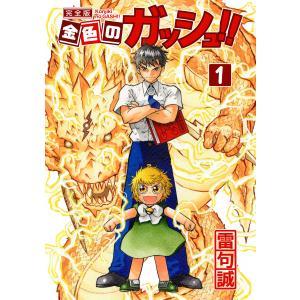 金色のガッシュ!! 完全版 (全巻) 電子書籍版 / 著:雷句誠|ebookjapan