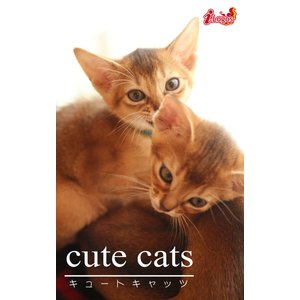 cute cats16 アビシニアン 電子書籍版 / 編集:アキバ書房|ebookjapan