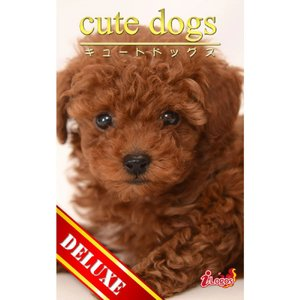 cute dogs DELUXE05 トイプードル 電子書籍版 / 編集:アキバ書房