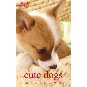 cute dogs33 ウェルシュ・コーギー 電子書籍版 / 編集:アキバ書房|ebookjapan