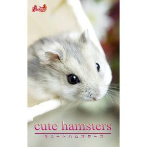 cute hamsters02 ジャンガリアンハムスター 電子書籍版 / 編集:アキバ書房|ebookjapan