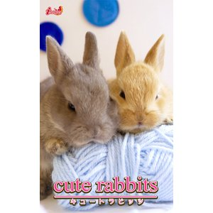 cute rabbits02 ミニウサギ 電子書籍版 / 編集:アキバ書房|ebookjapan