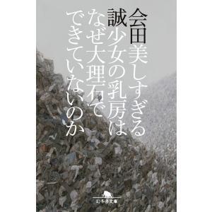 美しすぎる少女の乳房はなぜ大理石でできていないのか 電子書籍版 / 著:会田誠
