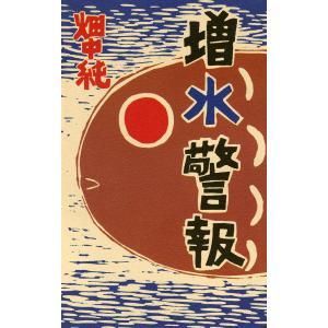 増水警報 電子書籍版 / 畑中純