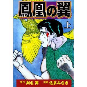鳳凰の翼 (上) 電子書籍版 / 漫画:佐多みさき 原作:剣名舞 ebookjapan