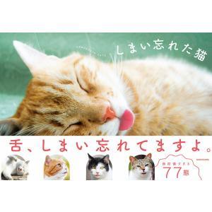 しまい忘れた猫 電子書籍版 / 編:KADOKAWA|ebookjapan