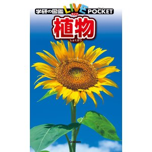 植物 電子書籍版 / 樋口正信