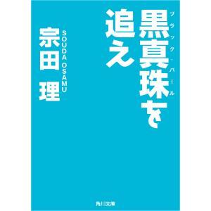黒真珠を追え 電子書籍版 / 著者:宗田理 ebookjapan