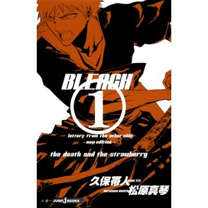 BLEACH letters from the other side ―new edition― 電...