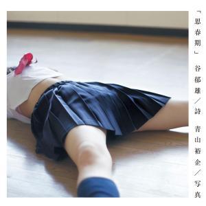 【初回50%OFFクーポン】思春期 電子書籍版 / 青山裕企/谷郁雄