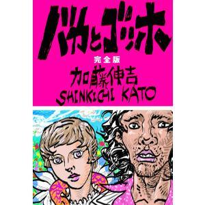 【初回50%OFFクーポン】バカとゴッホ 完全版 電子書籍版 / 加藤伸吉|ebookjapan