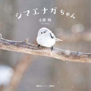 シマエナガちゃん 電子書籍版 / 小原玲|ebookjapan