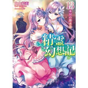 精霊幻想記13.対の紫水晶 電子書籍版 / 北山結莉/Riv|ebookjapan