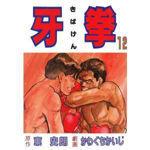 牙拳12 電子書籍版 / 劇画:かわぐちかいじ 原作:東史朗|ebookjapan