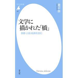 【初回50%OFFクーポン】文学に描かれた「橋」 詩歌・小説・絵画を読む 電子書籍版 / 磯辺勝 ebookjapan