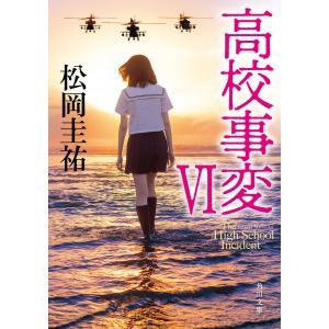 高校事変 VI 電子書籍版 / 著者:松岡圭祐