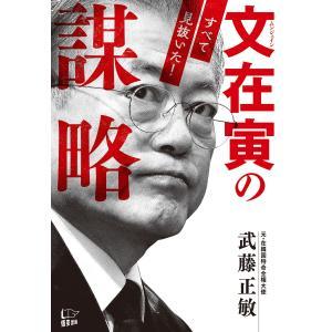 文在寅の謀略 電子書籍版 / 著:武藤正敏 ebookjapan